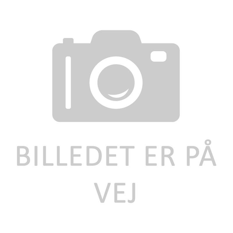 CT 1217 AKKU 17,0 Ah